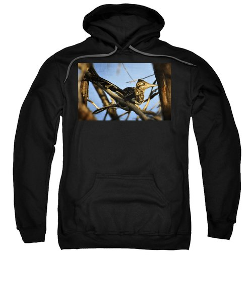 Roadrunner Up A Tree Sweatshirt by Saija  Lehtonen