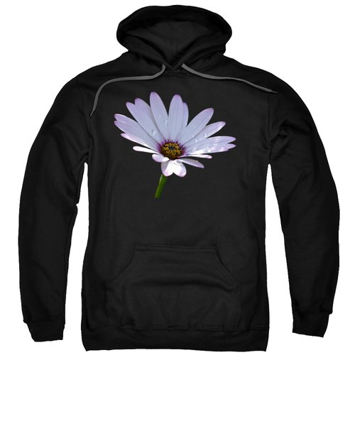 African Daisy Sweatshirt by Scott Carruthers