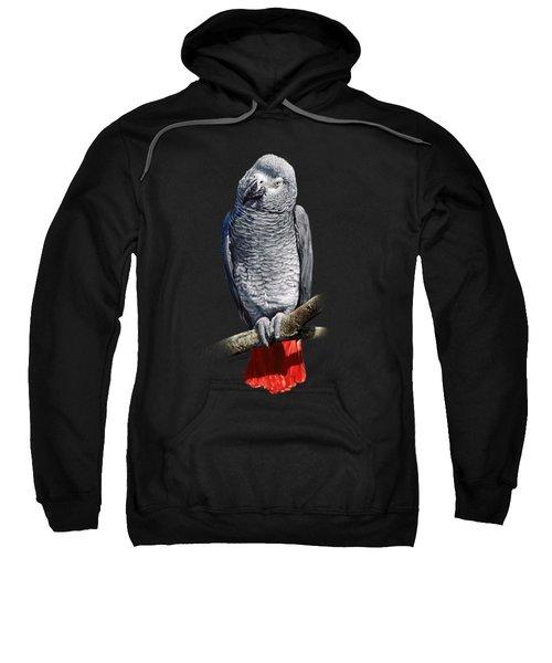 African Grey Parrot C Sweatshirt by Owen Bell
