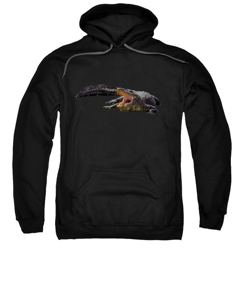 Alligator In Florida Sweatshirt by Zina Stromberg