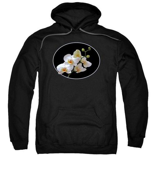 White Orchids On Black Sweatshirt by Gill Billington