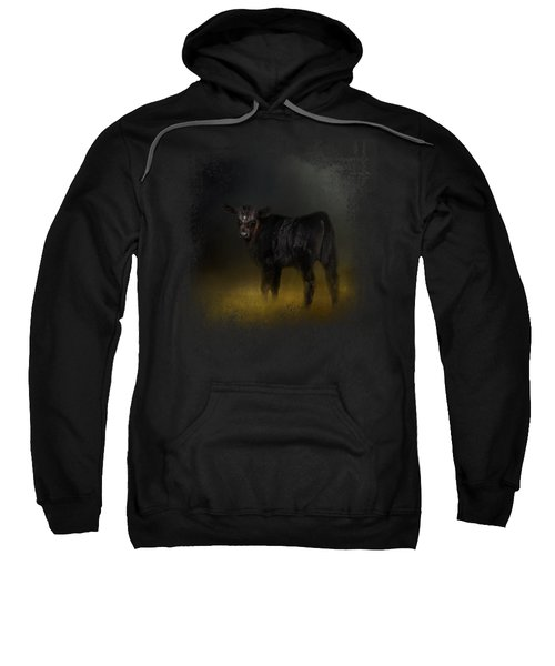 Black Angus Calf In The Moonlight Sweatshirt by Jai Johnson