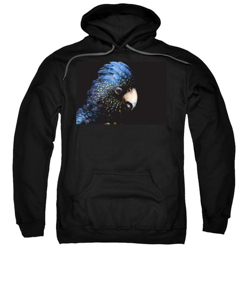 Black Cockatoo Sweatshirt by Rebecca Costa