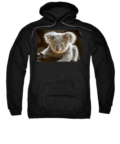 Koala Kid Sweatshirt by Jamie Pham