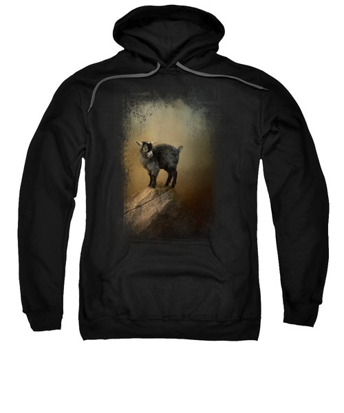 Little Rock Climber Sweatshirt by Jai Johnson