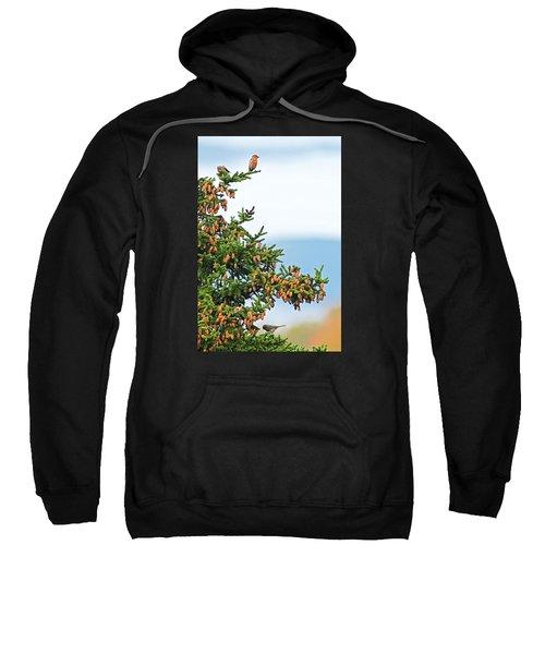 Out On A Limb # 2 Sweatshirt by Matt Plyler