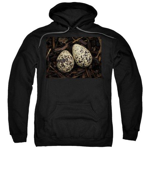 Speckled Killdeer Eggs By Jean Noren Sweatshirt by Jean Noren