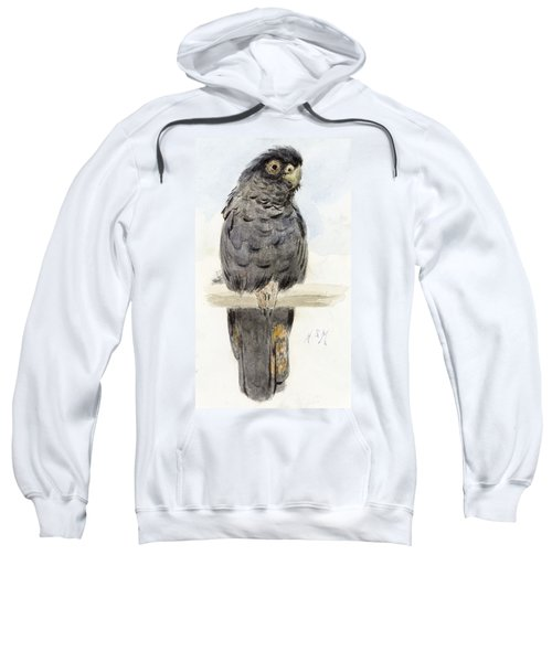A Black Cockatoo Sweatshirt by Henry Stacey Marks