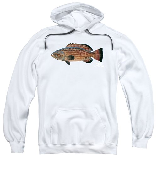 Black Grouper Sweatshirt by Carey Chen