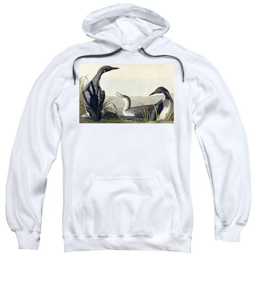 Black Throated Diver  Sweatshirt by John James Audubon