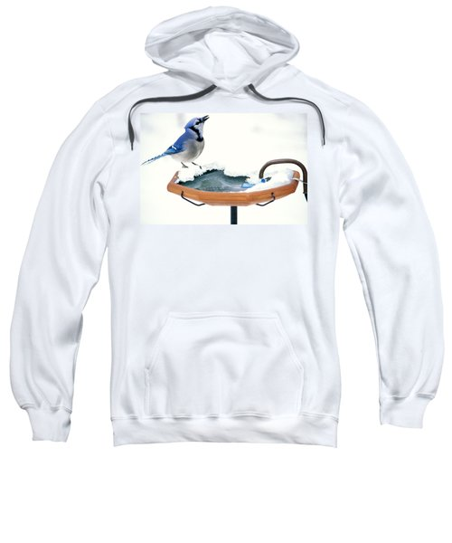 Blue Jay At Heated Birdbath Sweatshirt by Steve and Dave Maslowski