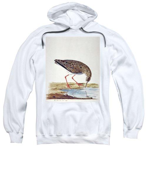 Curlew Sandpiper Sweatshirt by Charles Collins
