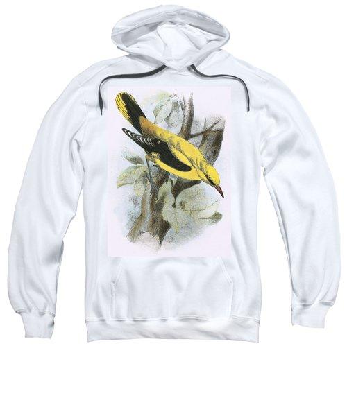 Golden Oriole Sweatshirt by English School