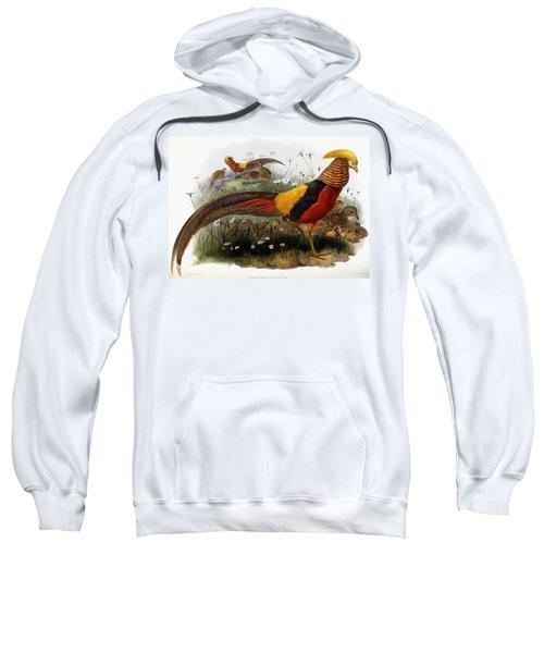 Golden Pheasants Sweatshirt by Joseph Wolf