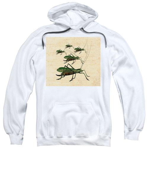 Grasshopper Parade Sweatshirt by Antique Images