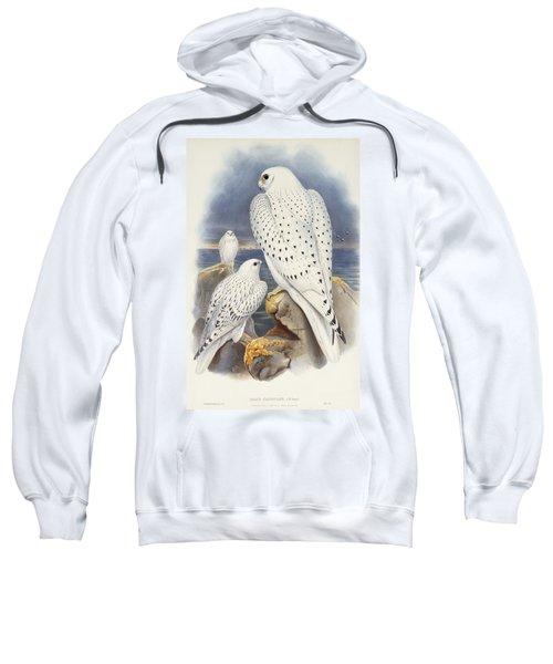 Greenland Falcon Sweatshirt by John Gould