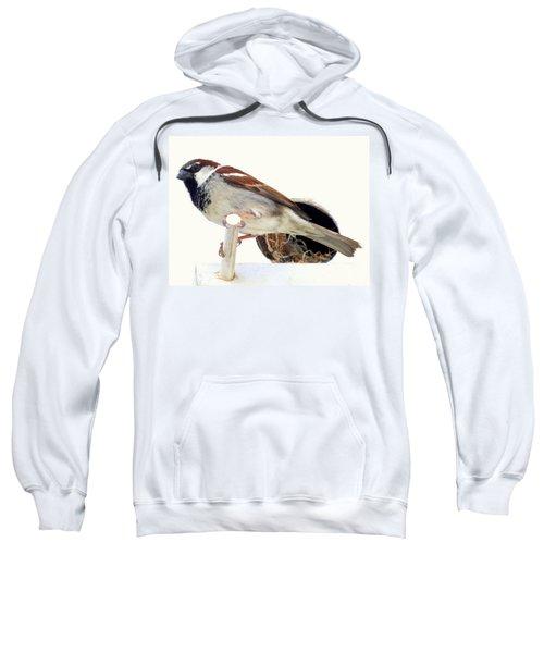 Little Sparrow Sweatshirt by Karen Wiles