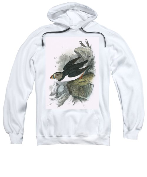 Puffin Sweatshirt by English School