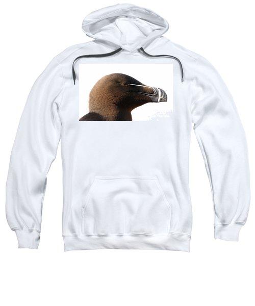 Razorbill Auk Sweatshirt by Jeannette Hunt