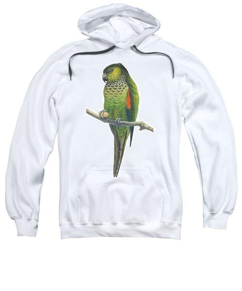 Rock Parakeet Sweatshirt by Anonymous