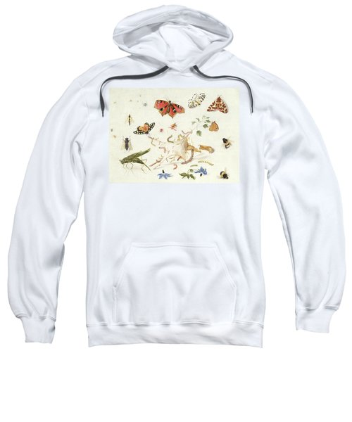 Study Of Insects And Flowers Sweatshirt by Ferdinand van Kessel