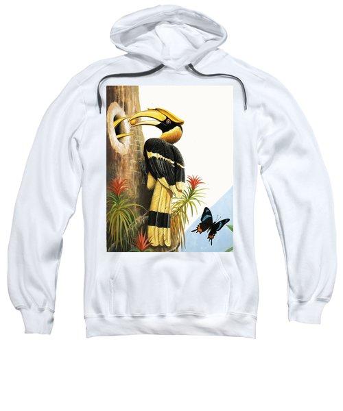 The Hornbill Sweatshirt by R.B. Davis