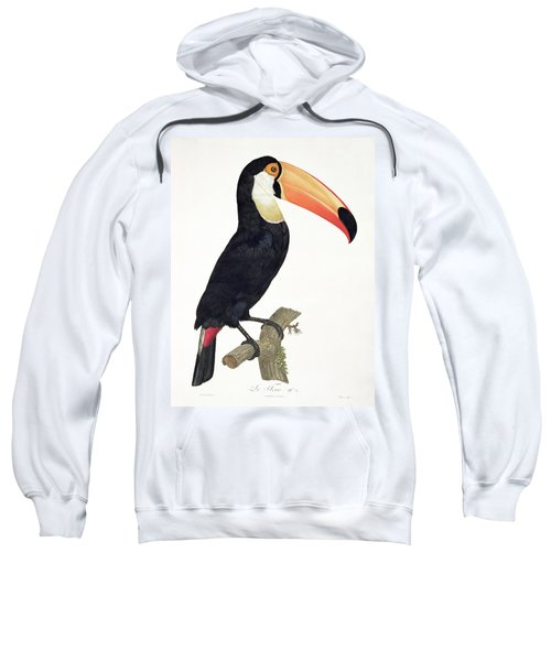 Toucan Sweatshirt by Jacques Barraband
