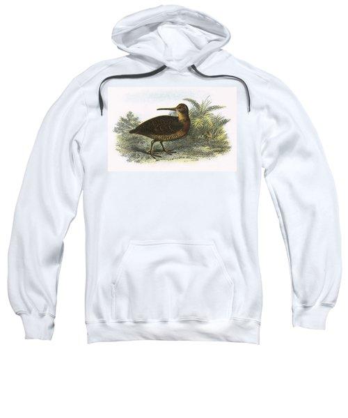 Woodcock Sweatshirt by English School