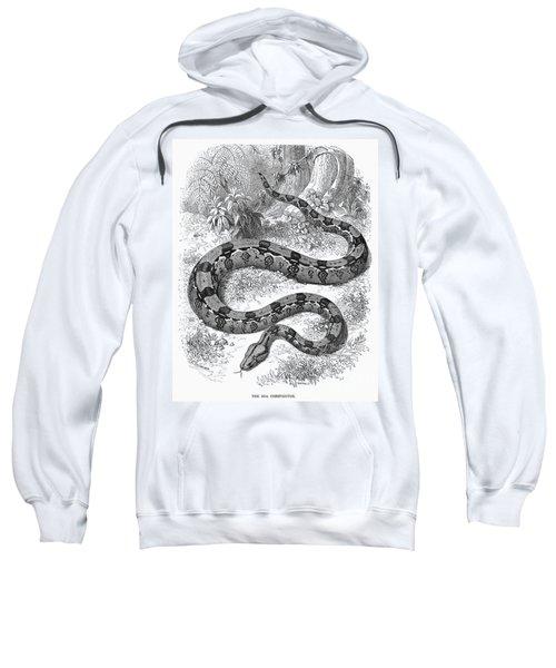 Boa Constrictor Sweatshirt by Granger