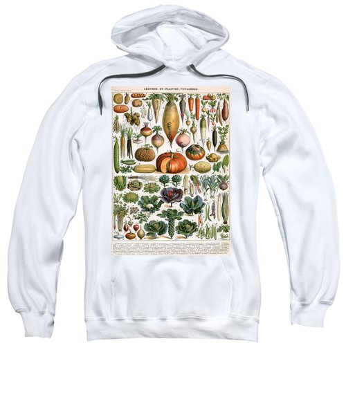 Illustration Of Vegetable Varieties Sweatshirt by Alillot