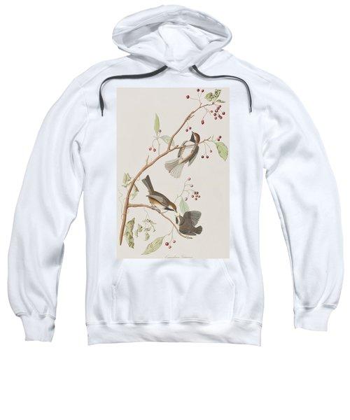 Canadian Titmouse Sweatshirt by John James Audubon