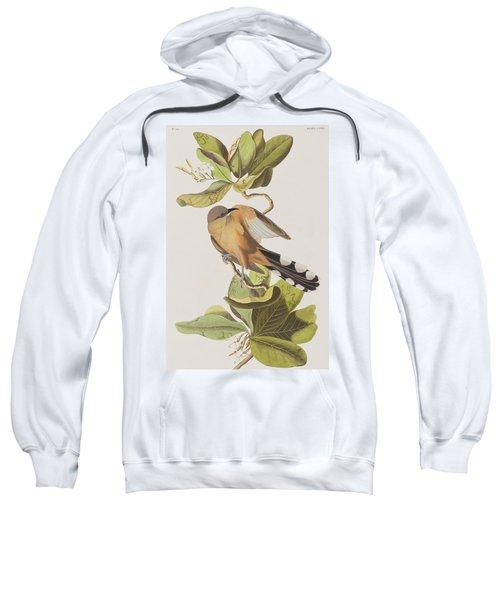 Mangrove Cuckoo Sweatshirt by John James Audubon
