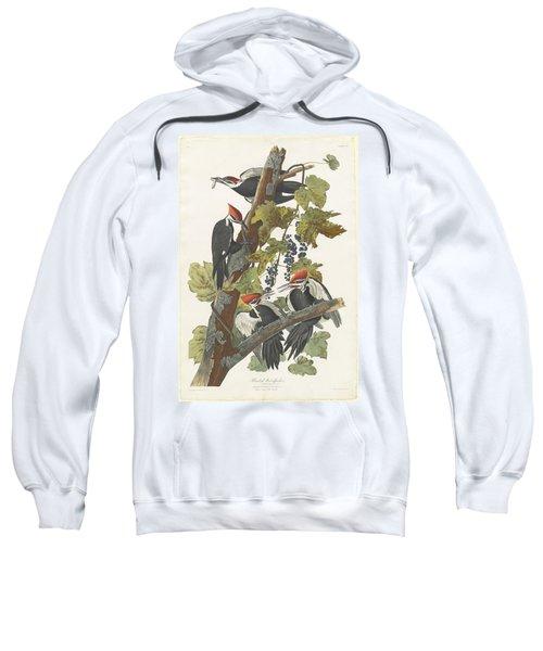 Pileated Woodpecker Sweatshirt by John James Audubon