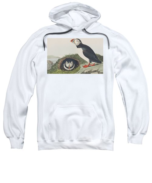 Puffin Sweatshirt by John James Audubon