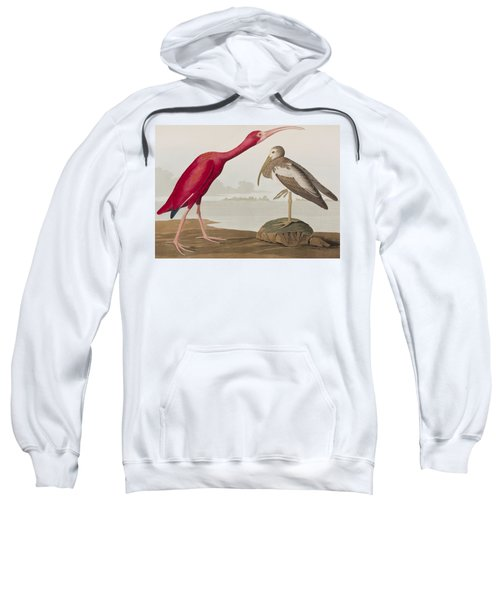 Scarlet Ibis Sweatshirt by John James Audubon