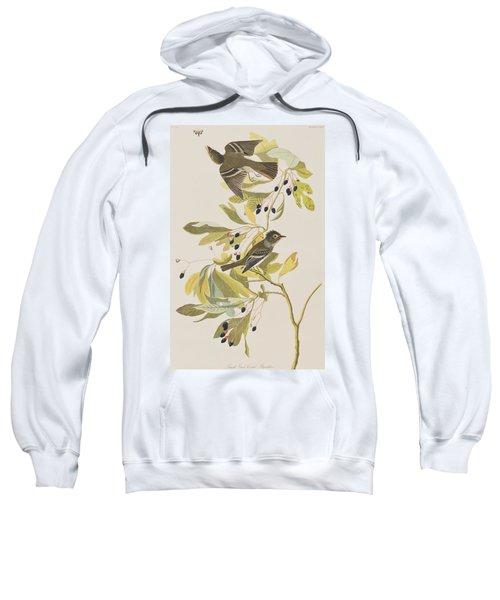 Small Green Crested Flycatcher Sweatshirt by John James Audubon