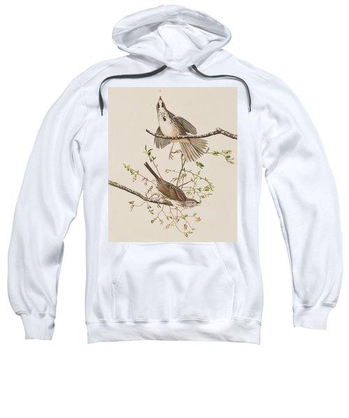 Song Sparrow Sweatshirt by John James Audubon