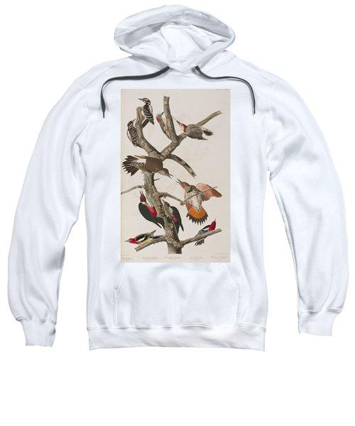 Woodpeckers Sweatshirt by John James Audubon