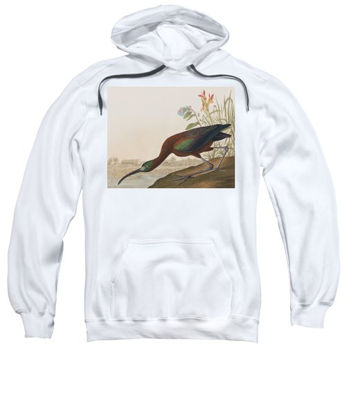Glossy Ibis Sweatshirt by John James Audubon