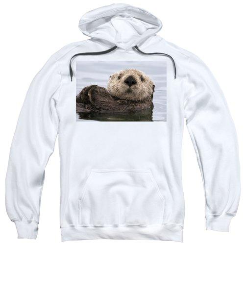 Sea Otter Elkhorn Slough Monterey Bay Sweatshirt by Sebastian Kennerknecht