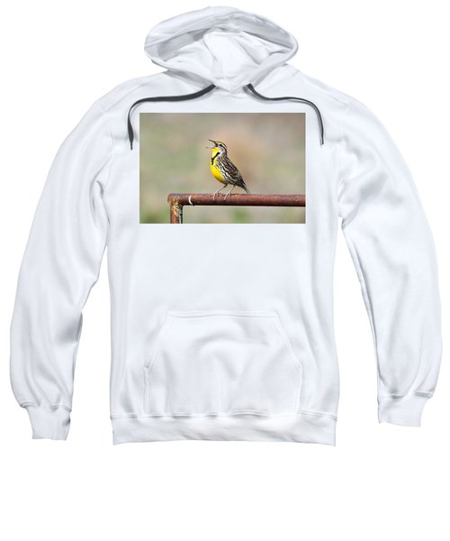 A Morning Song Sweatshirt by Michael Morse