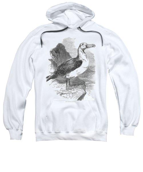 Albatross Sweatshirt by Granger