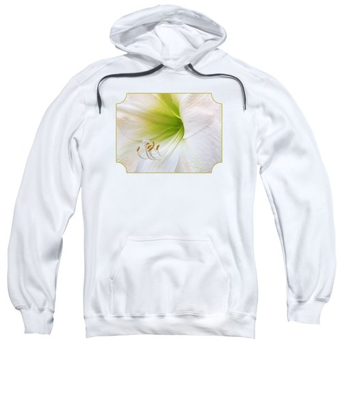 Alluring Amaryllis Sweatshirt by Gill Billington