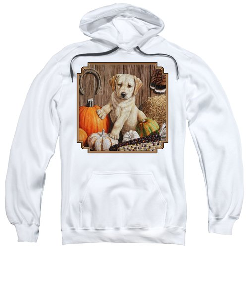 Pumpkin Puppy Sweatshirt by Crista Forest