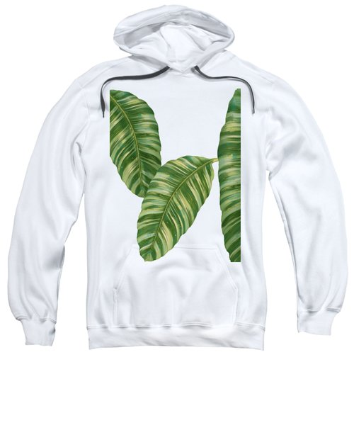 Rainforest Resort - Tropical Banana Leaf  Sweatshirt by Audrey Jeanne Roberts