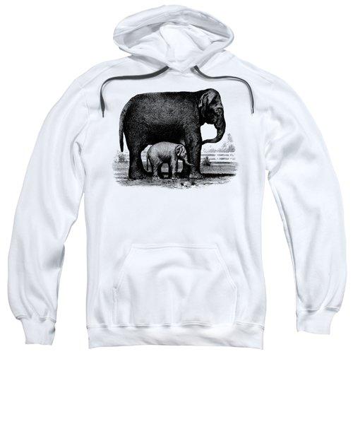 Baby Elephant T-shirt Sweatshirt by Edward Fielding