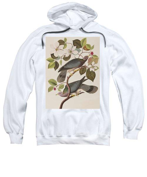 Band-tailed Pigeon  Sweatshirt by John James Audubon