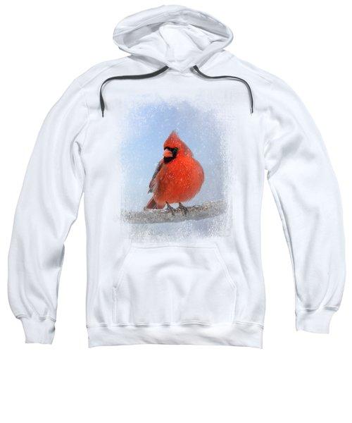 Cardinal In The Snow Sweatshirt by Jai Johnson