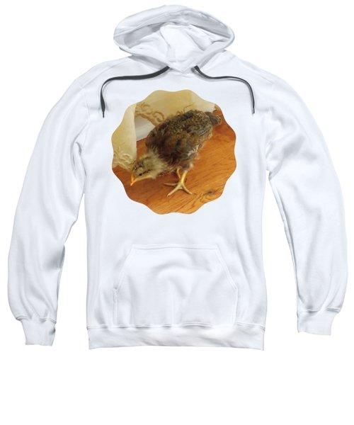 Chic Chickie Sweatshirt by Anita Faye