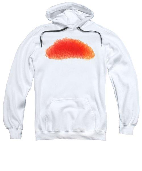 Citrus Sweatshirt by Sverre Andreas Fekjan